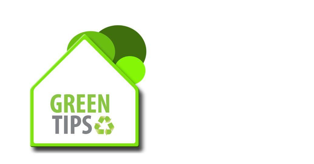 Tips for eco-friendly, plastic-Free packaging, carbon Neutral, cleaning solutions